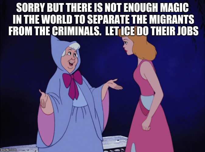 There are problems that magic alone can not solve | SORRY BUT THERE IS NOT ENOUGH MAGIC IN THE WORLD TO SEPARATE THE MIGRANTS FROM THE CRIMINALS.  LET ICE DO THEIR JOBS | image tagged in cinderella fairy godmother,illegal immigration,ice,build the wall,gangs,maga | made w/ Imgflip meme maker