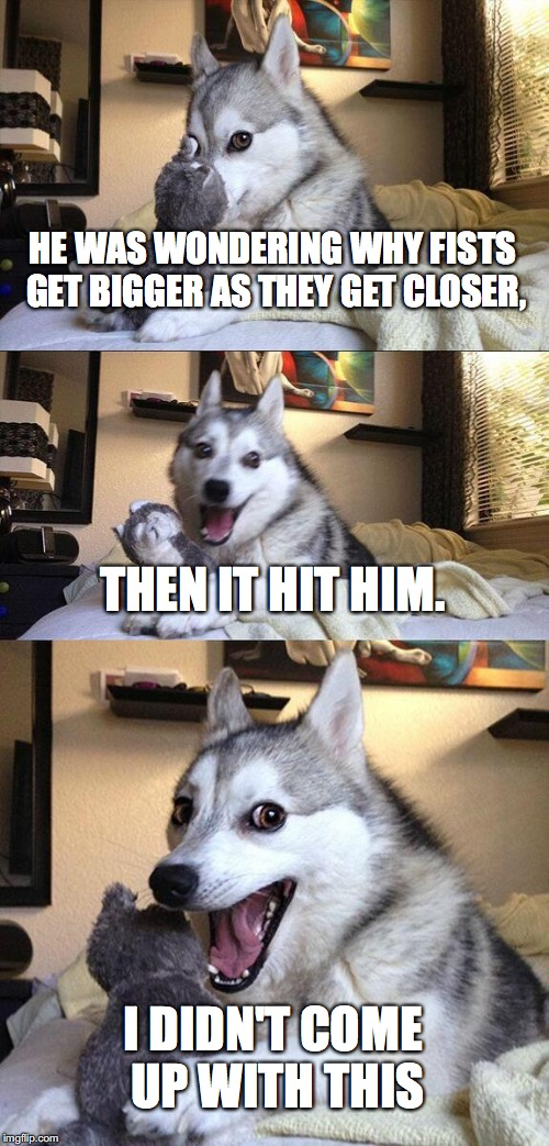 Bad Pun Dog Meme | HE WAS WONDERING WHY FISTS GET BIGGER AS THEY GET CLOSER, THEN IT HIT HIM. I DIDN'T COME UP WITH THIS | image tagged in memes,bad pun dog | made w/ Imgflip meme maker