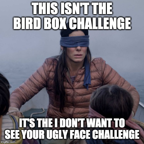 Bird Box | THIS ISN'T THE BIRD BOX CHALLENGE IT'S THE I DON'T WANT TO SEE YOUR UGLY FACE CHALLENGE | image tagged in memes,bird box | made w/ Imgflip meme maker