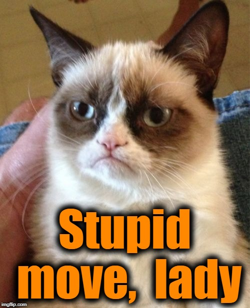 Grumpy Cat Meme | Stupid move,  lady | image tagged in memes,grumpy cat | made w/ Imgflip meme maker