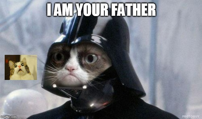 Grumpy Cat Star Wars Meme | I AM YOUR FATHER | image tagged in memes,grumpy cat star wars,grumpy cat | made w/ Imgflip meme maker