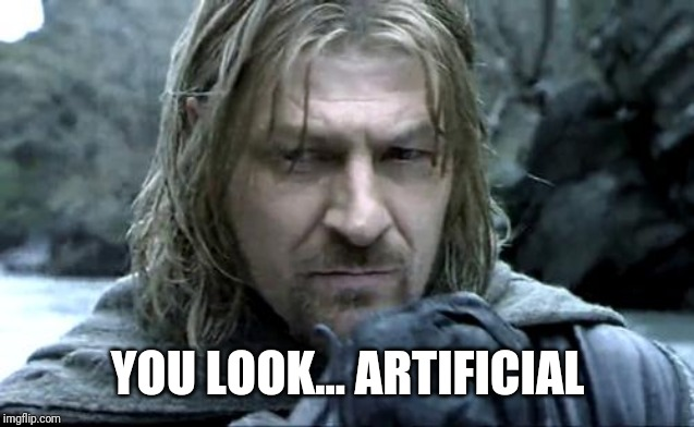boromir thinking | YOU LOOK... ARTIFICIAL | image tagged in boromir thinking | made w/ Imgflip meme maker