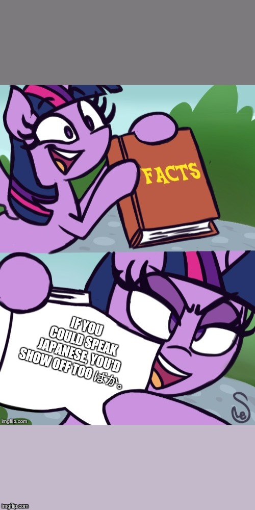 Facts | IF YOU COULD SPEAK JAPANESE, YOU'D SHOW OFF TOO ばか。 | image tagged in mlp fim,twilight sparkle,japanese | made w/ Imgflip meme maker