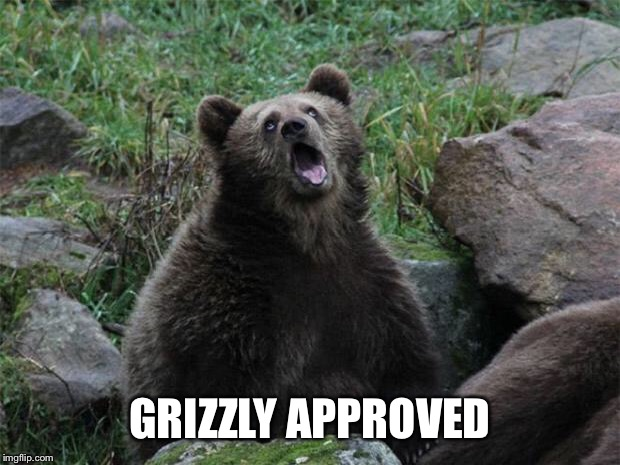 Sarcastic Bear | GRIZZLY APPROVED | image tagged in sarcastic bear | made w/ Imgflip meme maker