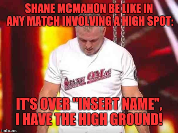"SHANE MCMAHON BE LIKE IN ANY MATCH INVOLVING A HIGH SPOT: IT'S OVER ""INSERT NAME"", I HAVE THE HIGH GROUND! 