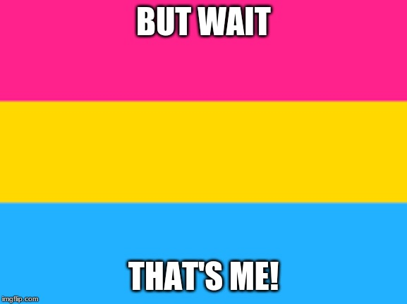 Pansexual flag | BUT WAIT THAT'S ME! | image tagged in pansexual flag | made w/ Imgflip meme maker