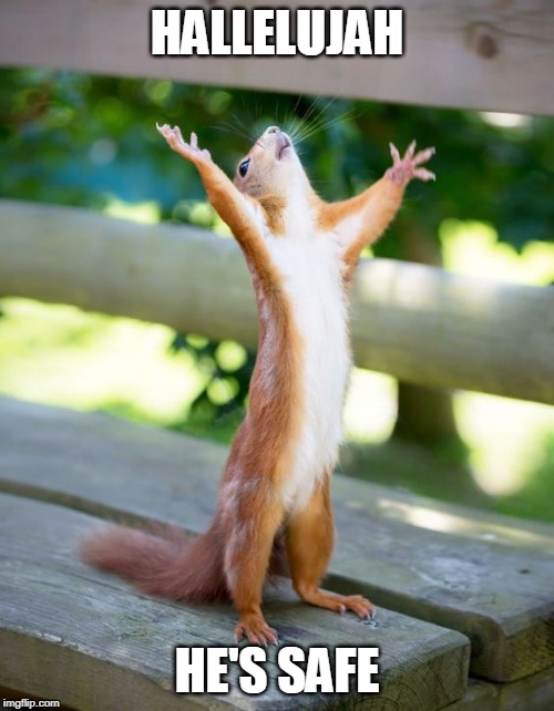 Super Squirrel | HALLELUJAH HE'S SAFE | image tagged in roll safe | made w/ Imgflip meme maker