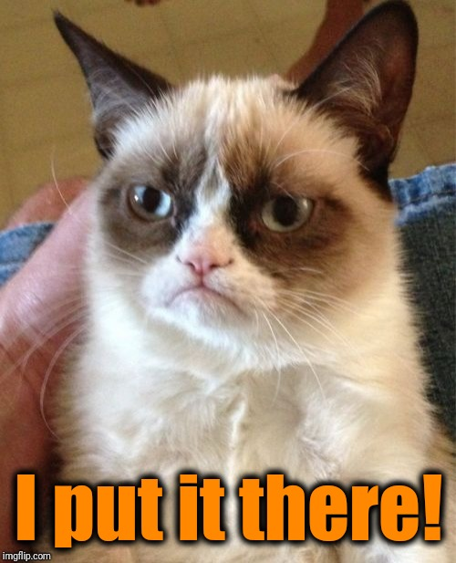 Grumpy Cat Meme | I put it there! | image tagged in memes,grumpy cat | made w/ Imgflip meme maker
