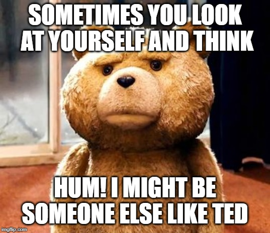 TED | SOMETIMES YOU LOOK AT YOURSELF AND THINK HUM! I MIGHT BE SOMEONE ELSE LIKE TED | image tagged in memes,ted | made w/ Imgflip meme maker