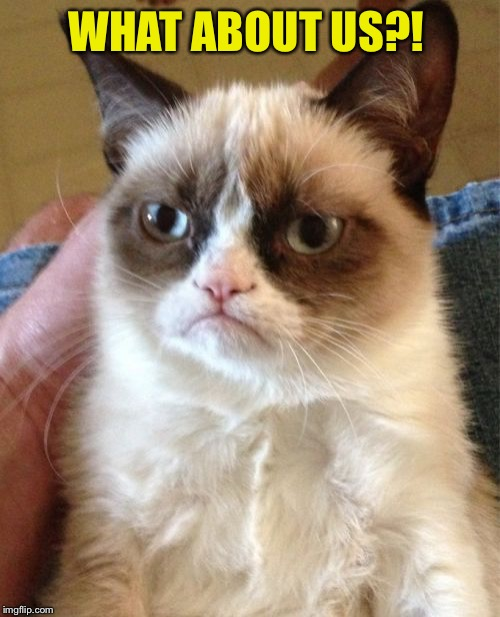 Grumpy Cat Meme | WHAT ABOUT US?! | image tagged in memes,grumpy cat | made w/ Imgflip meme maker