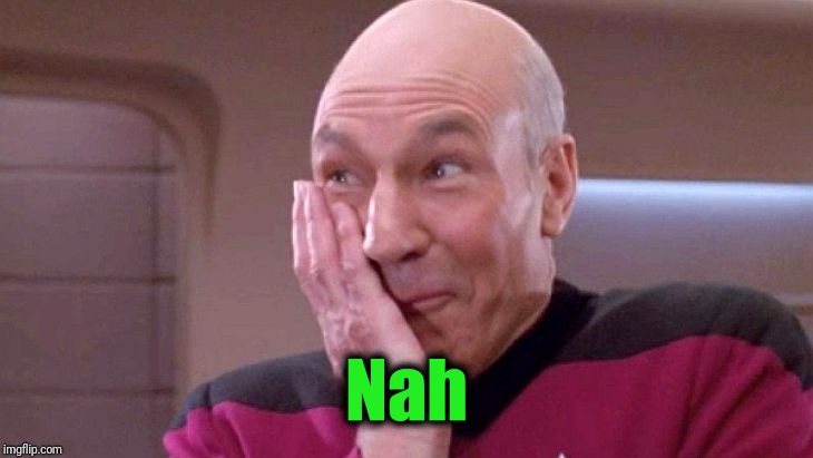 picard grin | Nah | image tagged in picard grin | made w/ Imgflip meme maker