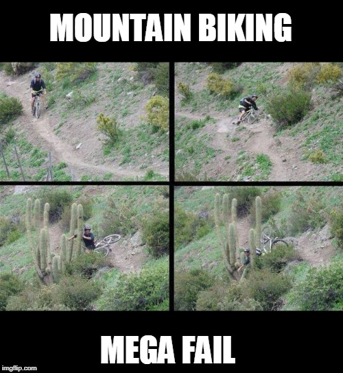 ouch | MOUNTAIN BIKING MEGA FAIL | image tagged in bike fall,epic fail,cactus | made w/ Imgflip meme maker