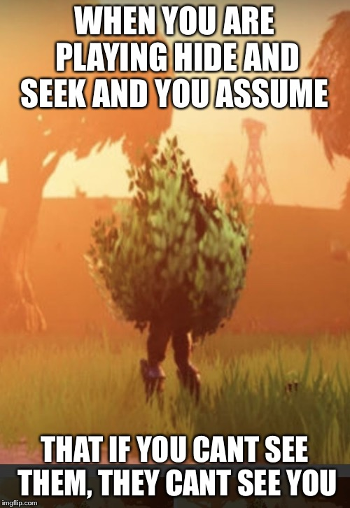 Fortnite bush | WHEN YOU ARE PLAYING HIDE AND SEEK AND YOU ASSUME THAT IF YOU CANT SEE THEM, THEY CANT SEE YOU | image tagged in fortnite bush | made w/ Imgflip meme maker