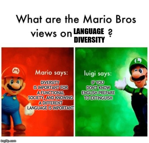 LANGUAGE DIVERSITY DIVERSITY IS IMPORTANT FOR A FUNCTIONAL SOCIETY, AND KNOWING A DIFFERENT LANGUAGE IS IMPORTANT IF YOU DON'T KNOW ENGLISH  | image tagged in mario says luigi says | made w/ Imgflip meme maker