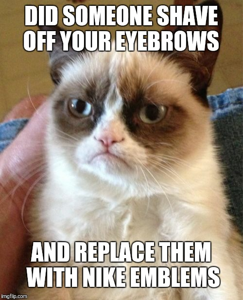 Grumpy Cat | DID SOMEONE SHAVE OFF YOUR EYEBROWS AND REPLACE THEM WITH NIKE EMBLEMS | image tagged in memes,grumpy cat | made w/ Imgflip meme maker