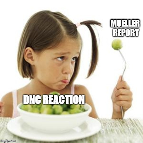 MUELLER REPORT DNC REACTION | image tagged in spoiled brat | made w/ Imgflip meme maker