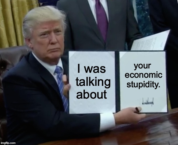 I was talking about your economic stupidity. | image tagged in memes,trump bill signing | made w/ Imgflip meme maker