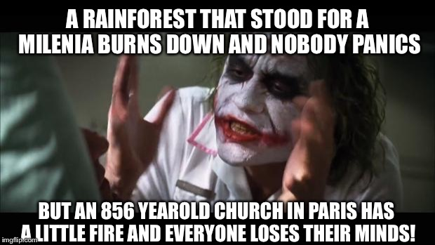 And everybody loses their minds | A RAINFOREST THAT STOOD FOR A MILENIA BURNS DOWN AND NOBODY PANICS BUT AN 856 YEAROLD CHURCH IN PARIS HAS A LITTLE FIRE AND EVERYONE LOSES T | image tagged in memes,and everybody loses their minds,notre dame,notre dame burning,notre dame fire,rainforests | made w/ Imgflip meme maker