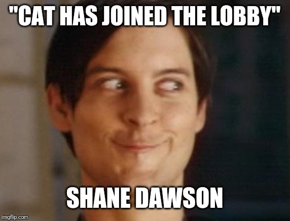 "Spiderman Peter Parker | ""CAT HAS JOINED THE LOBBY"" SHANE DAWSON 