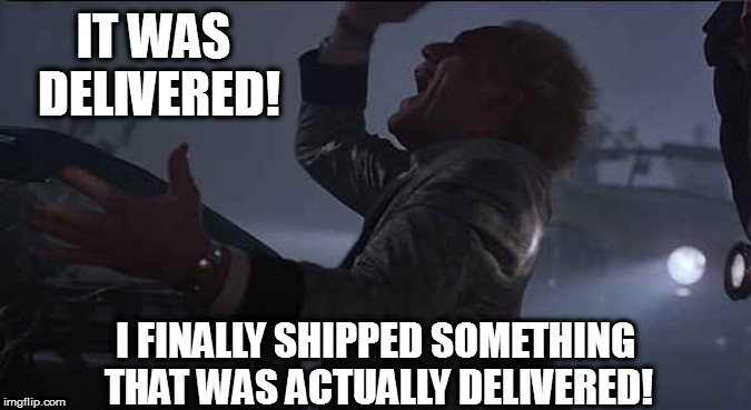IT WAS DELIVERED! I FINALLY SHIPPED SOMETHING THAT WAS ACTUALLY DELIVERED! | image tagged in doc brown | made w/ Imgflip meme maker