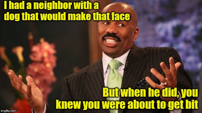 Steve Harvey Meme | I had a neighbor with a dog that would make that face But when he did, you knew you were about to get bit | image tagged in memes,steve harvey | made w/ Imgflip meme maker