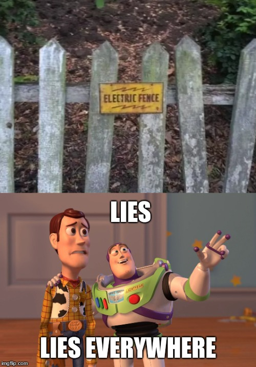 are you sure about that | LIES LIES EVERYWHERE | image tagged in memes,x x everywhere,seems legit,are you sure,funny,hmm | made w/ Imgflip meme maker