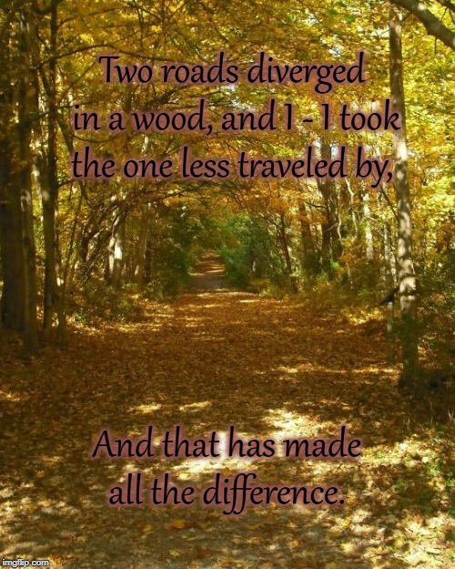 Two roads diverged in a wood, and I - I took the one less traveled by, And that has made all the difference. | image tagged in poetry,woods,frost | made w/ Imgflip meme maker