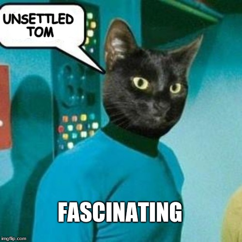 unsettled spock | UNSETTLED TOM FASCINATING | image tagged in unsettled tom,star trek,spock,cat,wow | made w/ Imgflip meme maker