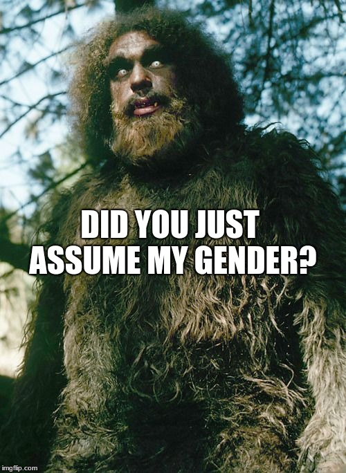 DID YOU JUST ASSUME MY GENDER? | image tagged in bigfoot,did you just assume my gender,hairy,oops | made w/ Imgflip meme maker