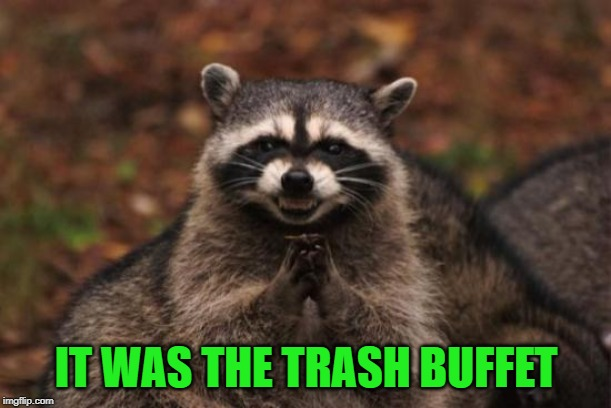 IT WAS THE TRASH BUFFET | made w/ Imgflip meme maker