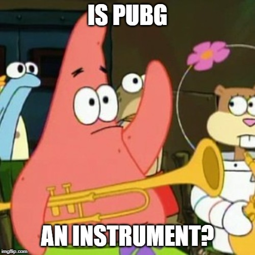 No Patrick | IS PUBG AN INSTRUMENT? | image tagged in memes,no patrick | made w/ Imgflip meme maker
