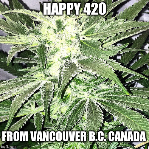 420 | HAPPY 420 FROM VANCOUVER B.C. CANADA | image tagged in 420,vancouver,weed,marijuana,smoke weed everyday | made w/ Imgflip meme maker