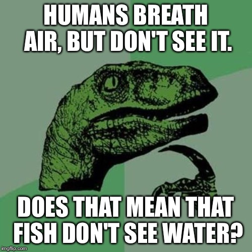 raptor | HUMANS BREATH AIR, BUT DON'T SEE IT. DOES THAT MEAN THAT FISH DON'T SEE WATER? | image tagged in raptor | made w/ Imgflip meme maker