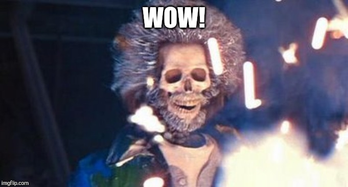 Daniel Stern Electrocuted | WOW! | image tagged in daniel stern electrocuted | made w/ Imgflip meme maker