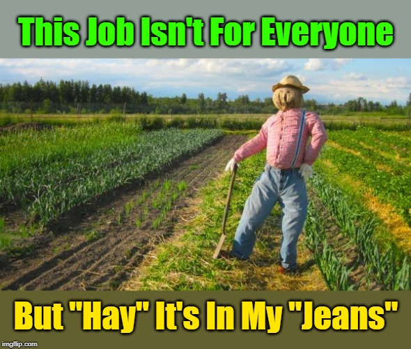 """It's A Tough Job, But He Gets A Good Celery"" ""Pun Weekend"" (19th-21st) A Triumph_9 & Craziness_all_the_way event 