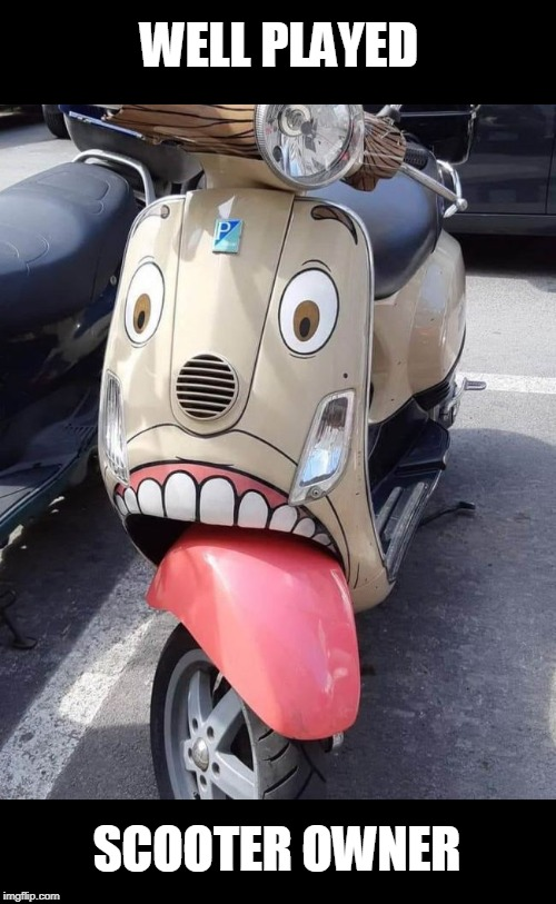WELL PLAYED SCOOTER OWNER | image tagged in funny vespa,scooter,well played | made w/ Imgflip meme maker