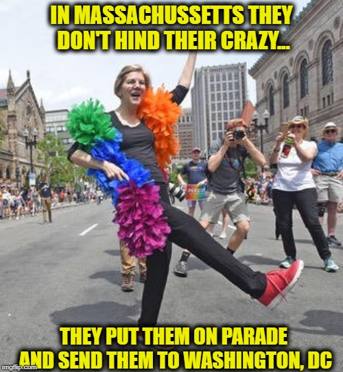 IN MASSACHUSSETTS THEY DON'T HIND THEIR CRAZY... THEY PUT THEM ON PARADE AND SEND THEM TO WASHINGTON, DC | image tagged in elizabeth warren,memes | made w/ Imgflip meme maker