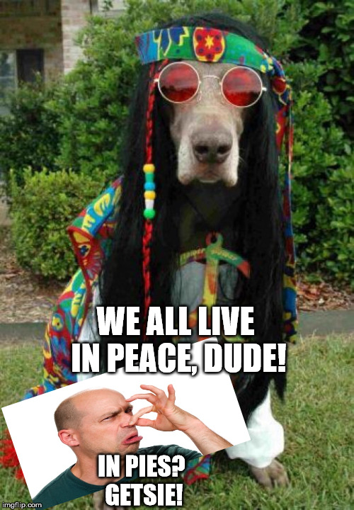 Hippie dog  | IN PIES? GETSIE! WE ALL LIVE IN PEACE, DUDE! | image tagged in hippie dog | made w/ Imgflip meme maker