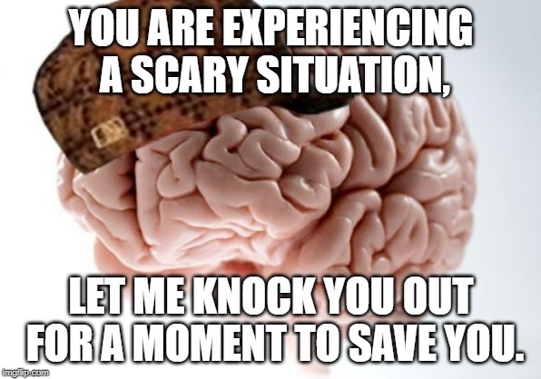 Scumbag Brain | YOU ARE EXPERIENCING A SCARY SITUATION, LET ME KNOCK YOU OUT FOR A MOMENT TO SAVE YOU. | image tagged in memes,scumbag brain | made w/ Imgflip meme maker