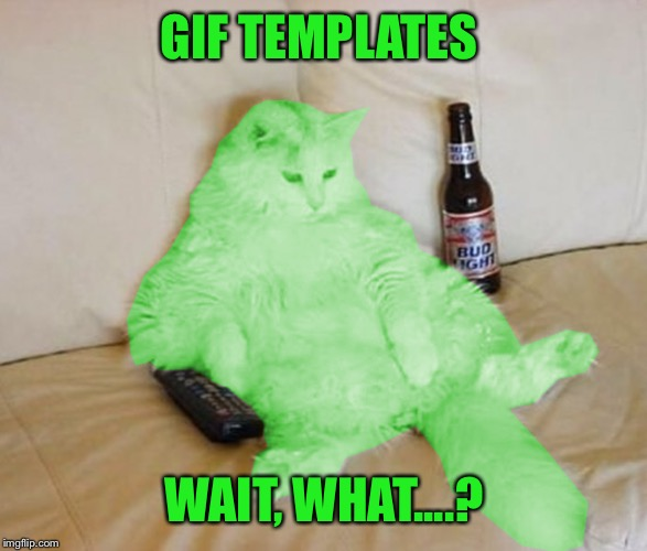 RayCat Chillin' | GIF TEMPLATES WAIT, WHAT....? | image tagged in raycat chillin' | made w/ Imgflip meme maker