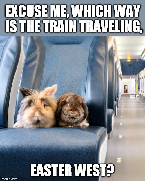 Pun Weekend - a Triumph_9 and Craziness_all_the_way event | EXCUSE ME, WHICH WAY IS THE TRAIN TRAVELING, EASTER WEST? | image tagged in happy easter,pun weekend,triumph_9,craziness_all_the_way,bunnies | made w/ Imgflip meme maker