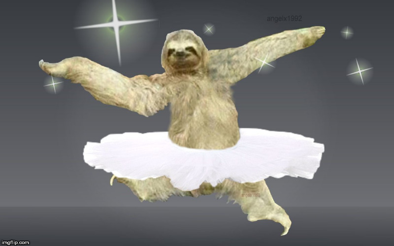 Sloth | image tagged in sloth,sunday,ballerina,dance,happy day,dancer | made w/ Imgflip meme maker