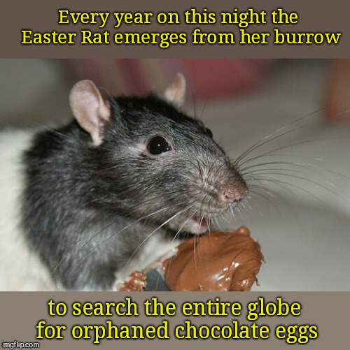 Legend of the Easter Rat | Every year on this night the Easter Rat emerges from her burrow to search the entire globe for orphaned chocolate eggs | image tagged in easter rat,cute animals | made w/ Imgflip meme maker