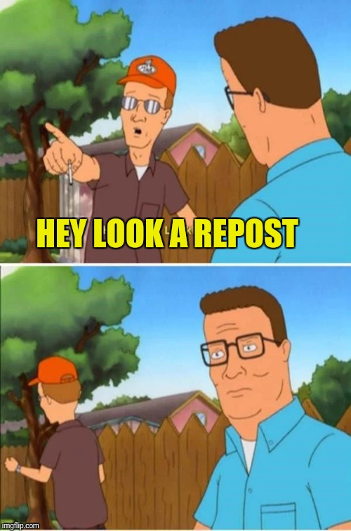 How to distract a repost nazi ;-) | HEY LOOK A REPOST | image tagged in king of the hill,reposts | made w/ Imgflip meme maker