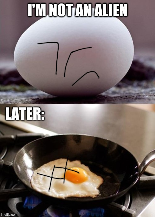 klm egg | I'M NOT AN ALIEN LATER: | image tagged in klm egg | made w/ Imgflip meme maker