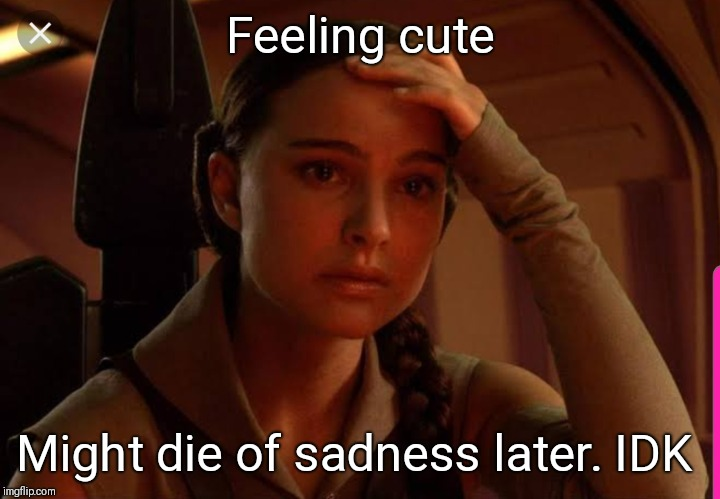 Sad Padme |  Feeling cute; Might die of sadness later. IDK | image tagged in padme,revenge of the sith,anakin,star wars | made w/ Imgflip meme maker