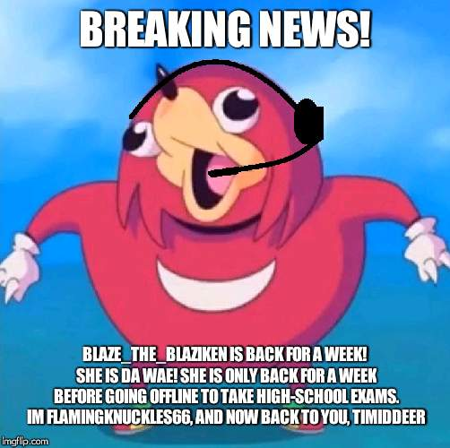 She be back! | BREAKING NEWS! BLAZE_THE_BLAZIKEN IS BACK FOR A WEEK! SHE IS DA WAE! SHE IS ONLY BACK FOR A WEEK BEFORE GOING OFFLINE TO TAKE HIGH-SCHOOL EX | image tagged in help desk uganda knuckles,blaze_the_blaziken,breaking news | made w/ Imgflip meme maker