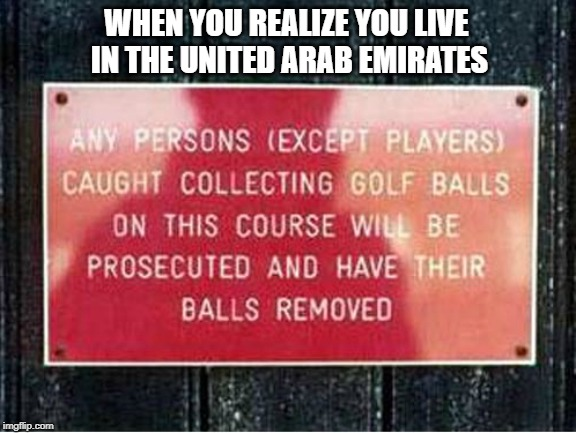 I'll make sure that I don't go to this golf course! | WHEN YOU REALIZE YOU LIVE IN THE UNITED ARAB EMIRATES | image tagged in balls,golf,shoplifting | made w/ Imgflip meme maker