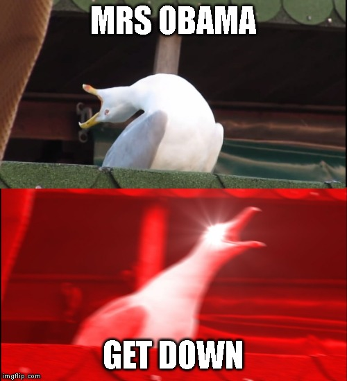 MRS OBAMA GET DOWN | image tagged in screaming bird | made w/ Imgflip meme maker