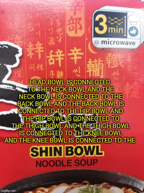 Lost in translation | HEAD BOWL IS CONNECTED TO THE NECK BOWL AND THE NECK BOWL IS CONNECTED TO THE BACK BOWL AND THE BACK BOWL IS CONNECTED TO THE HIP BOWL AND T | image tagged in lost in translation | made w/ Imgflip meme maker